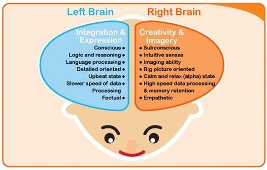พัฒนาการของสมองลูก..?
