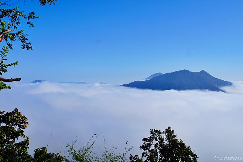 พาเที่ยวเชียงคาน เบิ่งทะเลหมอกภูทอก ขี่รถแต๊กๆขึ้นภูป่าเปาะครับ
