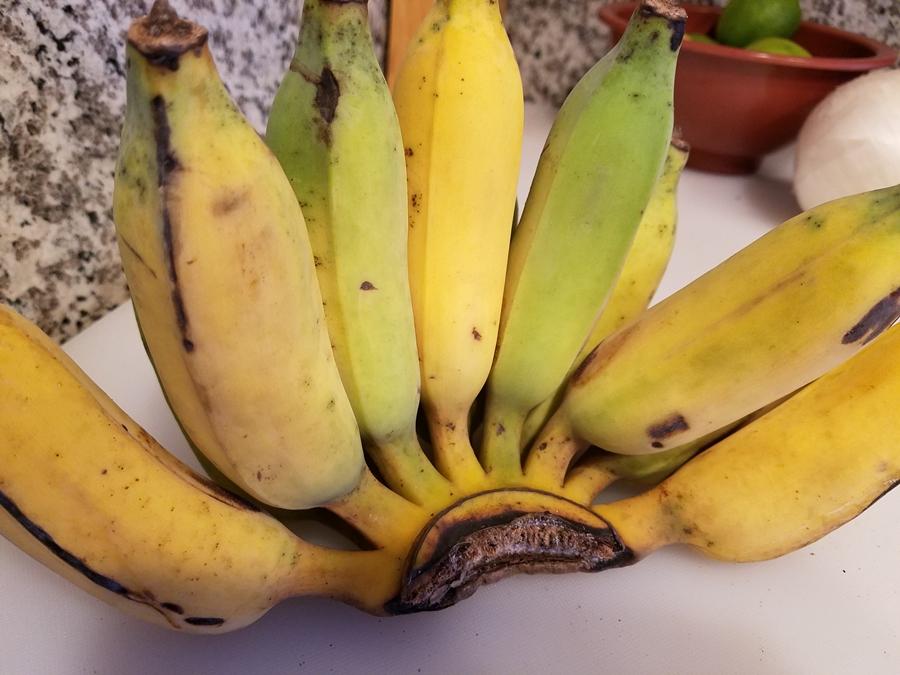 กล้วยปิ้งราดน้ำผึ้ง